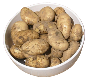 New Potatoes (Cornish)