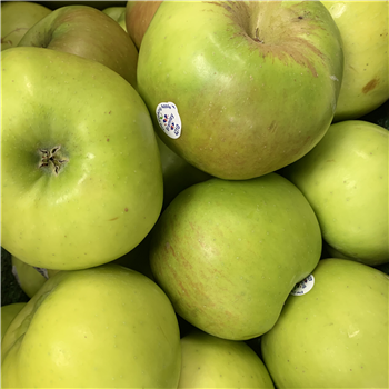 Apples (Bramley)